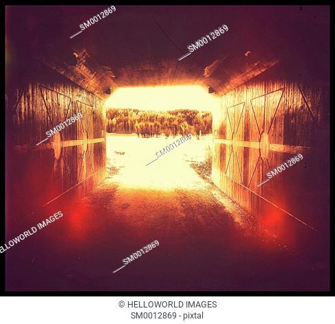 Underpass glow and trees, Sweden, Scandinavia