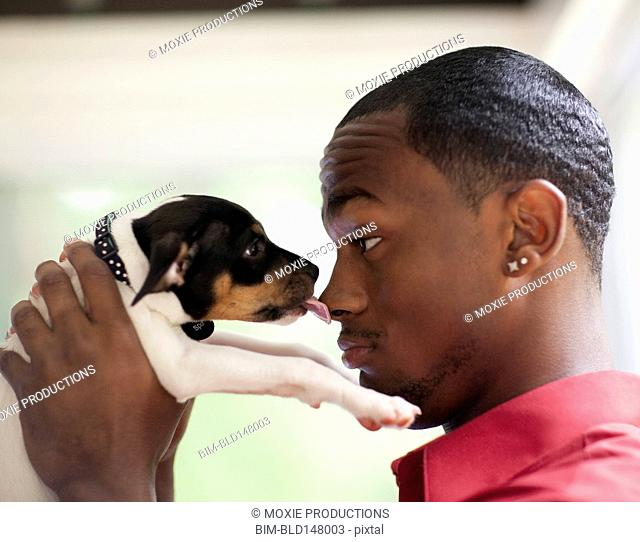 Puppy licking African American man