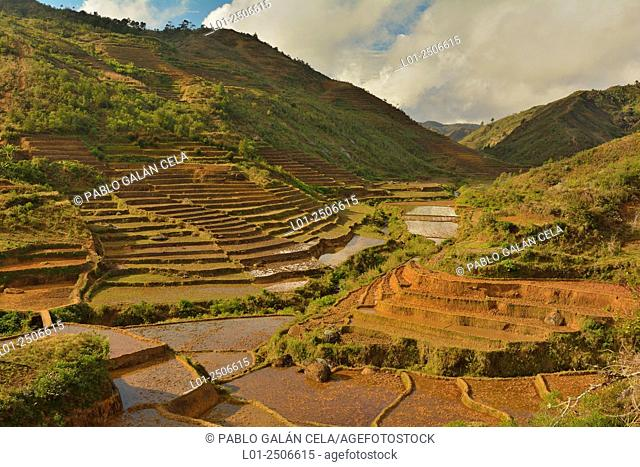 Terraced fields, Zafimaniry ethnic group territory, South Madagascar