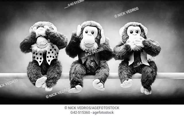 Three stuffed monkeys (See no evil, Speak no evil, Hear no evil)