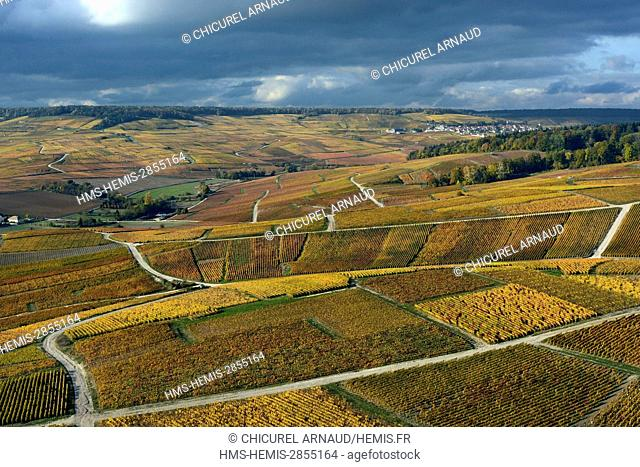 France, Marne, Cumieres, the hillsides of Champagne during fall (aerial view)