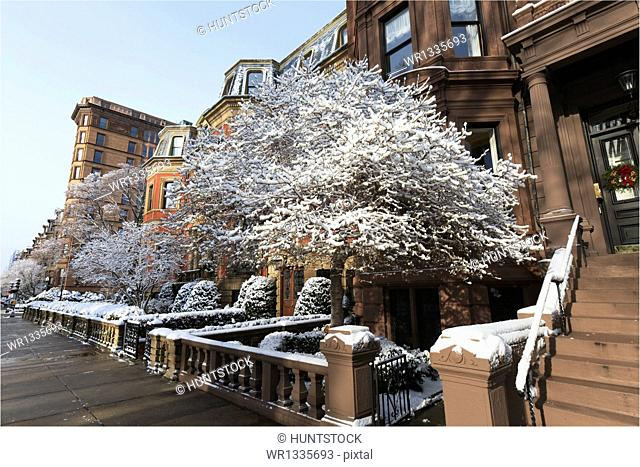 Buildings on Commonwealth Avenue after a snow storm, Boston, Suffolk County, Massachusetts, USA