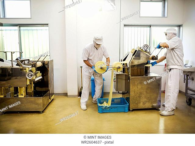 A Soba noodle factory. Sheets of fresh noodle dough being passed through a large pressing machine