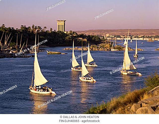 Egypt, Aswan, Nile River, Elephantine Island, Feluccas, Sailing