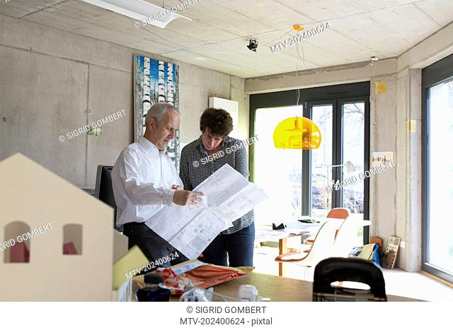 Two Architects discussing about blueprints in the office, Freiburg im Breisgau, Baden-Württemberg, Germany
