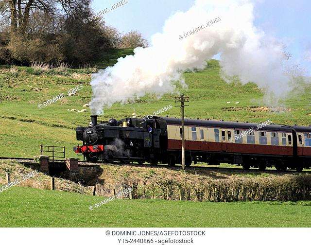 Visiting Pannier Tank engine 1638 steams through the Shropshire countryside towards Arley on the Severn Valley Railway, England, Europe