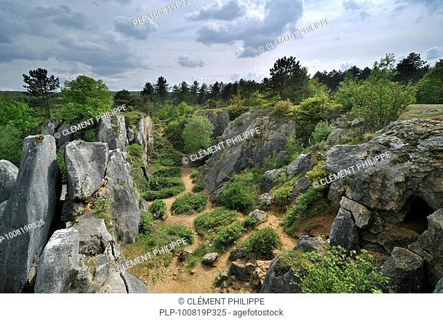 Eroded rocks of ravine in the nature reserve Fondry des Chiens, a sinkhole near Nismes at Viroinval in the Ardennes, Belgium