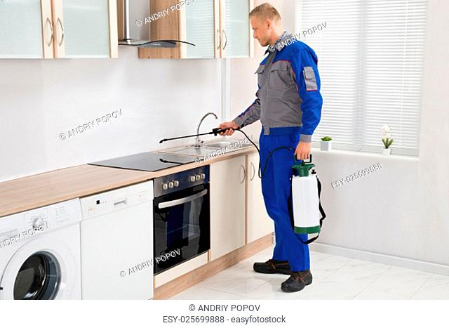 Young Male Pest Control Worker Spraying Pesticide On Induction Hob In Kitchen