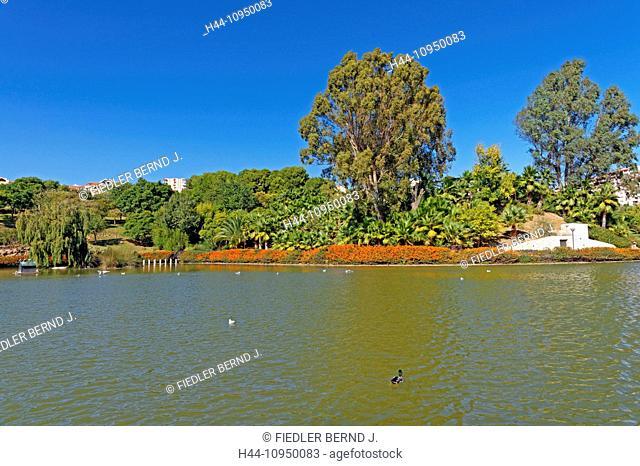 Europe, Spain, ES, Andalusia, Benalmadena Costa, Avenida Federico Garcia Lorca, Parque De La Paloma, palms, gardens, park, plants, place of interest, tourism