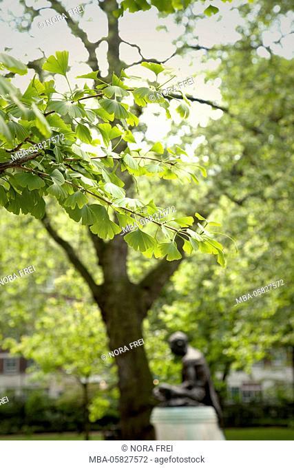 Park, tree, sculpture, garden