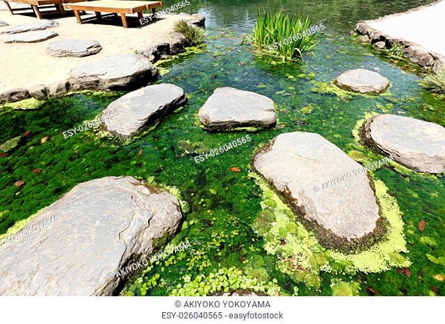 Japanese garden, view of pond