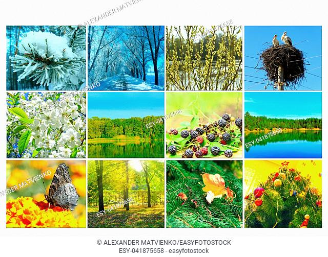 Blank with different twelve colored images of nature for calendar. Ready photo for calendar. Pictures for yearly calendar. Placard for office