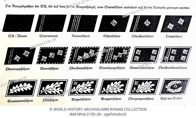 the rank insignia of the stormtroopers of the NAzi Party 1934
