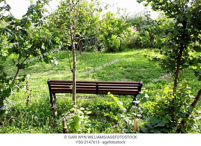 bench in park in rome italy