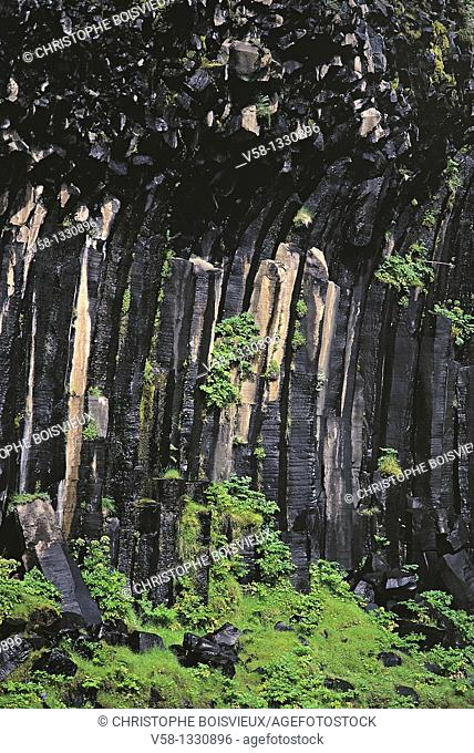Basaltic columns, Svartifoss Falls, Skaftafell National Park, Iceland