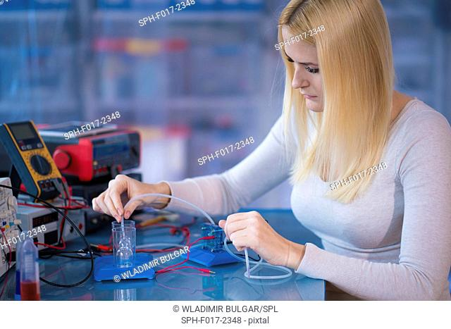 MODEL RELEASED. Woman experimenting with fuel cell