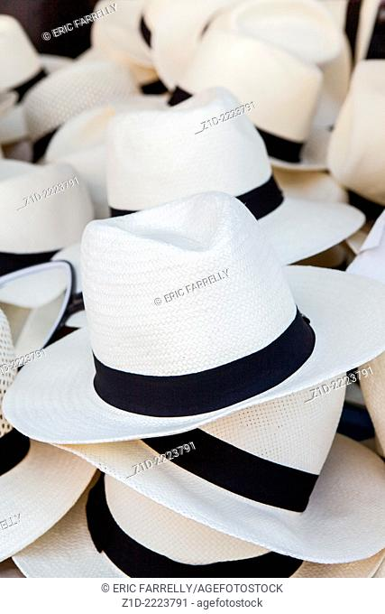 Panama White hats for Sale Toulon
