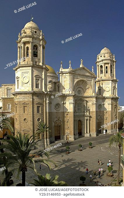 Cathedral of the Holy Cross on the waters - 18th century (also called New Cathedral). Cadiz. Region of Andalusia. Spain. Europe