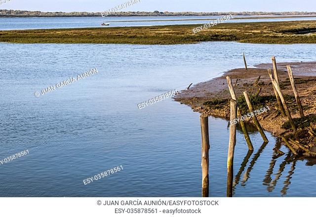 Little fishing boat working along Piedras river marshlands, El Rompido, Huelva, Spain