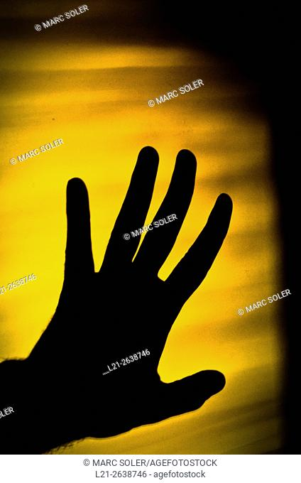 Silhouette of a hand on a yellow wall