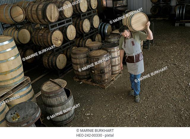 Worker carrying oak barrel in distillery cellar