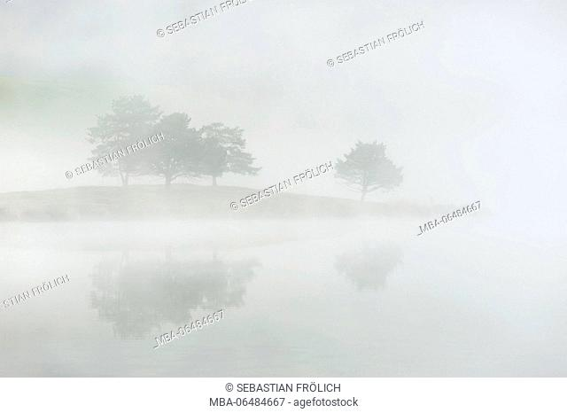 Mirroring of some trees on a headland in the water of a small foggy alpine lake close to Mittenwald