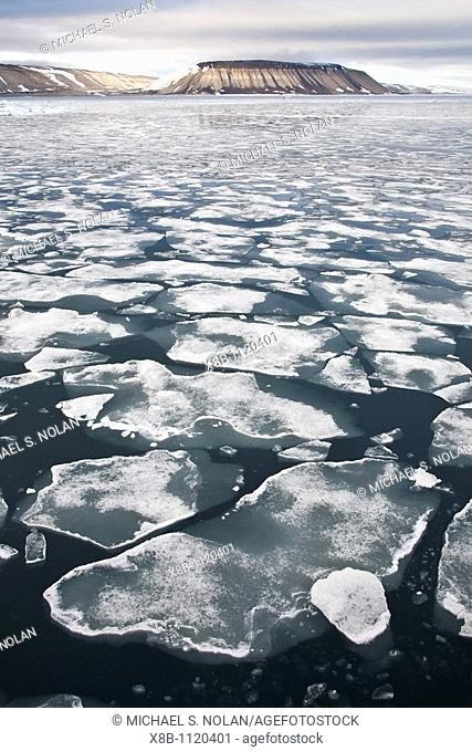 Open leads surrounded by multi-year ice floes in the Barents Sea between Edge¯ya Edge Island and Kong Karls Land in the Svalbard Archipelago, Norway