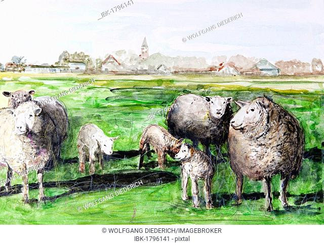 Sheep on the pasture, Westerhever village, North Frisia, Schleswig-Holstein, northern Germany, painted in watercolours by Gerhard Kraus, Kriftel, Germany