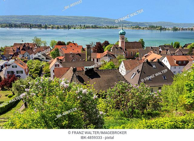 View over Allensbach to Reichenau Island, Lake Constance, Baden-Württemberg, Germany