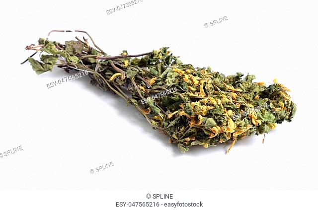 Dried medicinal herbs raw materials isolated on white. Lamium galeobdolon, commonly known as yellow archangel, artillery plant, or aluminium plant