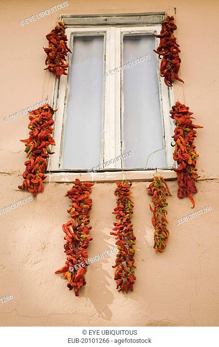 Strings of red and orange chili peppers hung up to dry in summer sunshine from window frame of house in the old town