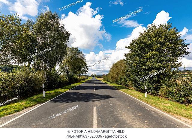 Road between Esebeck and Barterode, Flecken Adelebsen, Naturraum Sollingvorland, Landkreis Göttingen, Niedersachsen, Germany