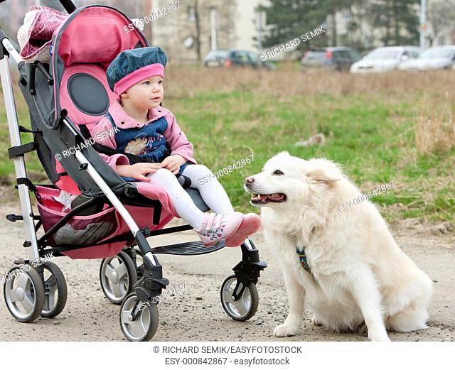 toddler sitting in a pram on walk with a dog