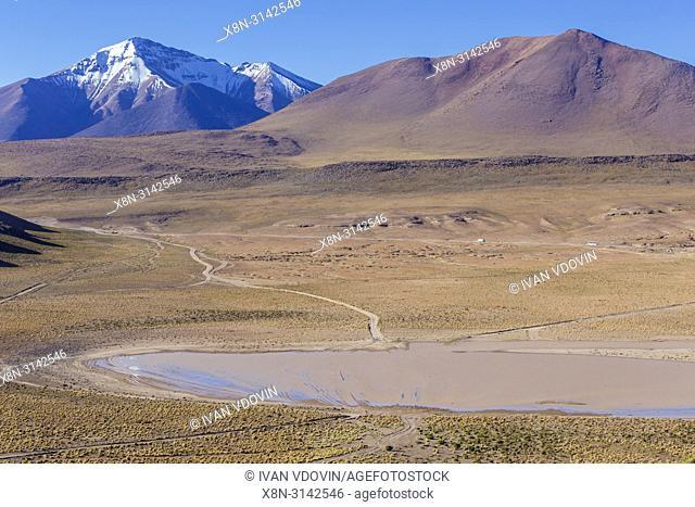 Andes, near Laguna Canapa, Potosi department, Bolivia