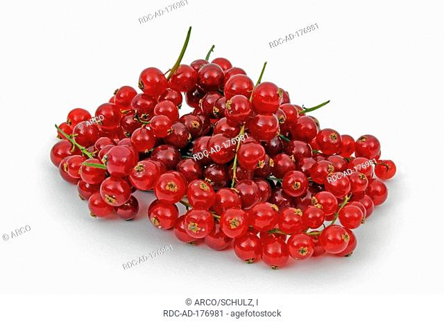 Red Currant berries, Ribes rubrum