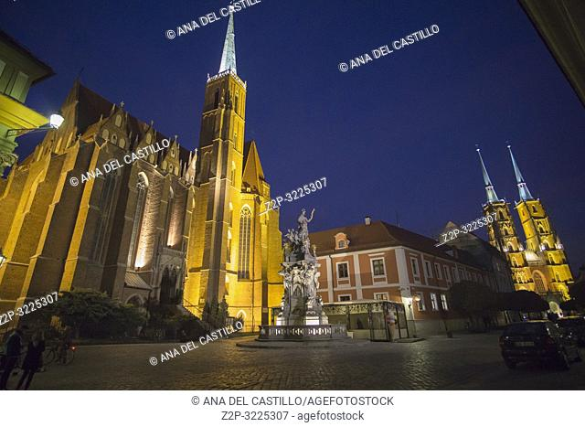 Tum Island with cathedral and historical buildings in Wroclaw by night, Poland