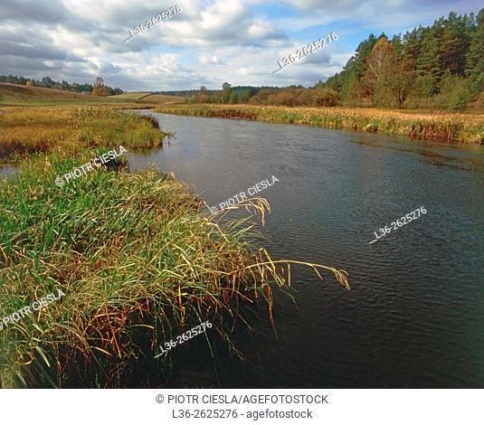 Suwalski region. Marycha river. Poland