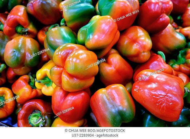 Green peppers and Red peppers