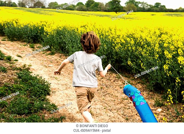 Rear view of boy running along yellow flower field track pulling fish kite