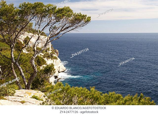 Galdana beach. Minorca. Balearics islands. Spain. Europe