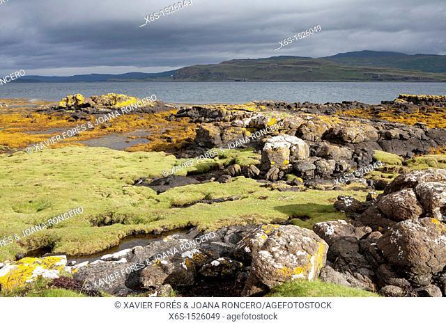 Coast of the Isle of Mull, Argyll and Bute, Scotland