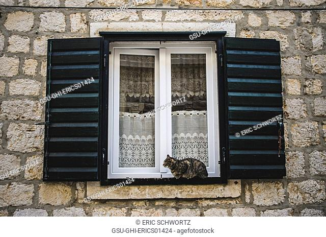 Cat Sitting on Windowsill of Stone Building, Vis, Croatia
