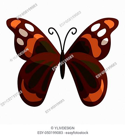Multicolored butterfly icon. Cartoon illustration of multicolored butterfly icon for web