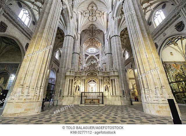 Catedral de la Asunción de la Virgen, Salamanca, comunidad autónoma de Castilla y León, Spain