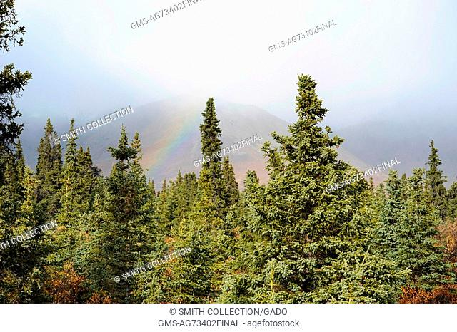 A rainbow appears in the sky over the mountain forest in Healy, Alaska. Image courtesy USGS. 2014