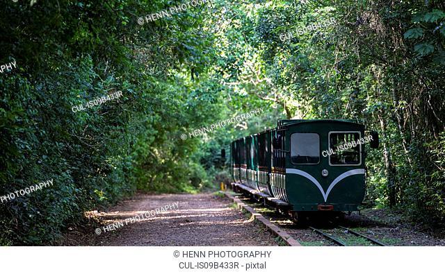 Train at Iguazu falls, Misiones, Argentina