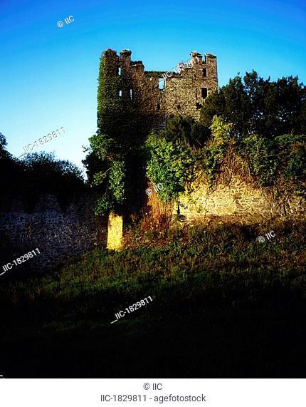 Co Limerick, Desmond Castle, Ardare