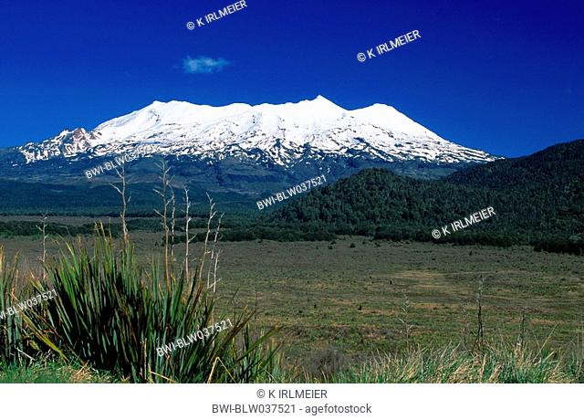 Mount Ruapehu, New Zealand, Tongariro NP