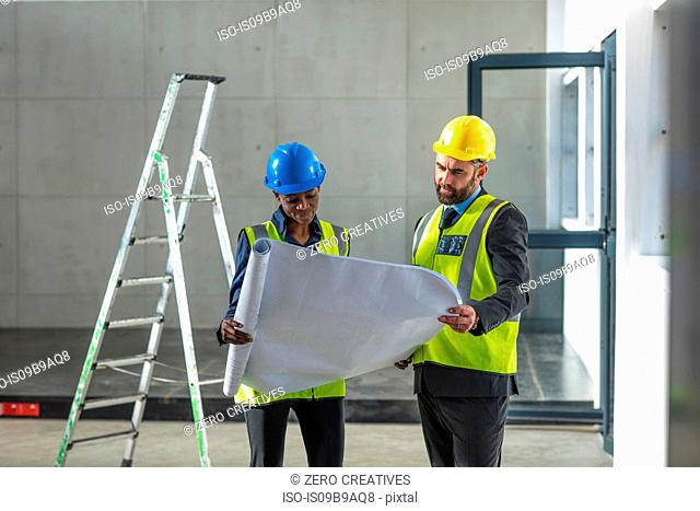 Colleagues with hard hat and hi viz jacket looking at blueprint