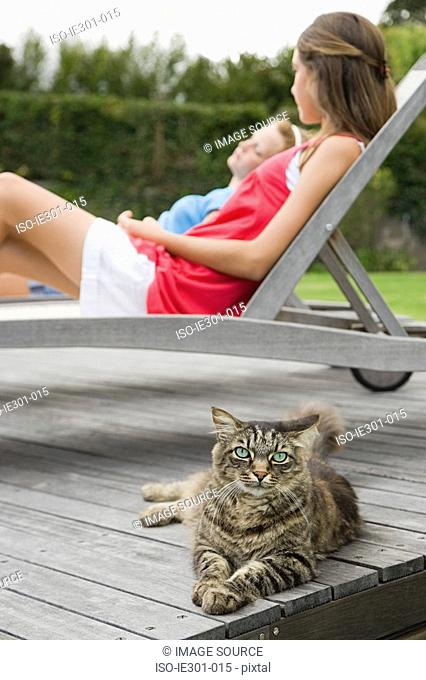 A cat with teenage girls in the background